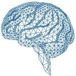 対AI!? イーロンマスクが提唱する「ニューラルレース」とは?
