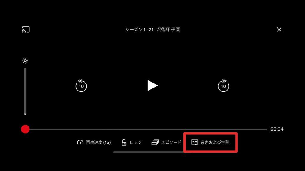 Netflix 字幕